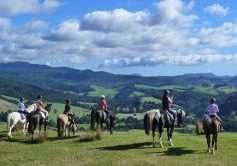 Rangihau Ranch Horse Riding